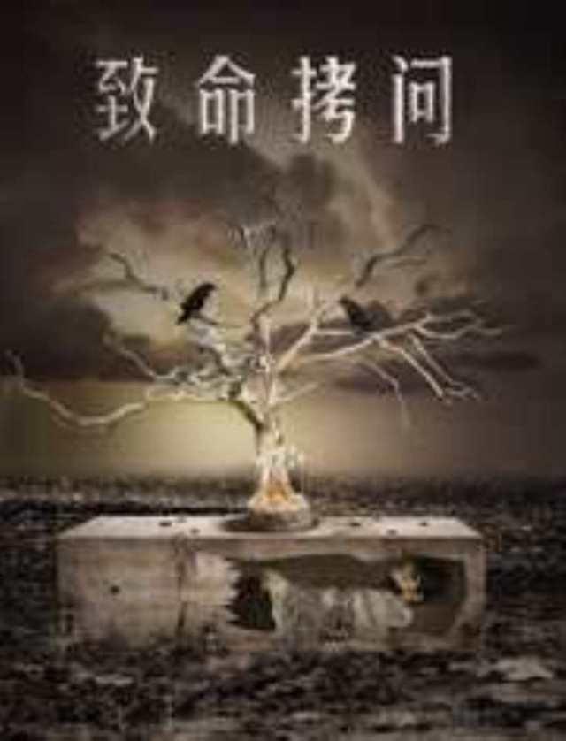 致命拷问HD1280高清国语中字版
